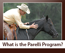 What is the Parelli Program