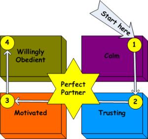 perfect partner diagram