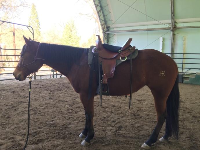 River in Rocky's saddle